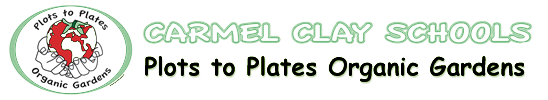 Plots to Plates Organic Gardens – CCS Green Team