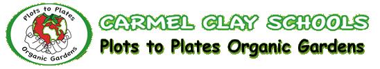 Plots to Plates Organic Gardens – CCS Green Team